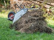 Lebensraum getrocknetes Gras