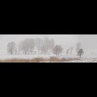 HHK_20725.jpg (Fietsche)