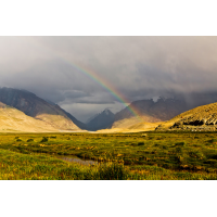Hochplateau des Pamir (4000m).jpg (shantelada)