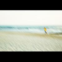 _J6A6903 Strandlauf.jpg (shantelada)
