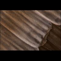 100x Zampa lyssa-1200.jpg (A_K)