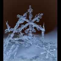 2017-01-23 12-48-43 (B,Radius5,Smoothing3).jpg (Hans.h)