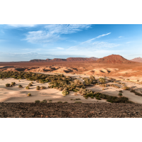 Namib-2.jpg (Harald Esberger)