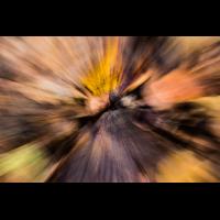 IMG_8432.jpg (Harmonie)
