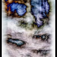 IMG_9301-Kopie.jpg (Harmonie)