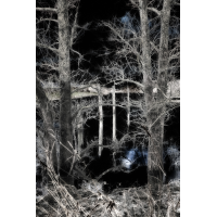 IMG_0128-Bearbeitet-2.jpg (Harmonie)