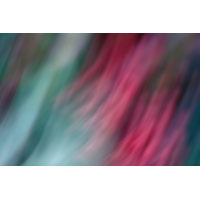IMG_7182.JPG (mosofreund)
