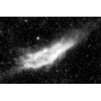 NGC 1499 mono for.jpg (mosofreund)