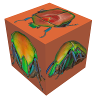 cube.png (Adalbert)