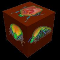 cube2.png (Adalbert)