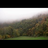 Laubmischwald.jpg (Artengalerie)