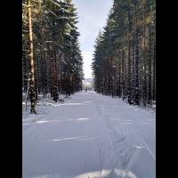 IMG_20190213_113850 klein.jpg (Steffen123)