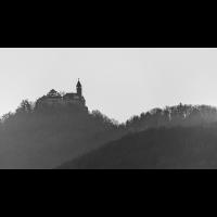 _D811189.jpg (Herzogpictures)