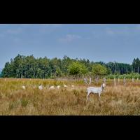 Landschaftspflege.jpg (Il-as)
